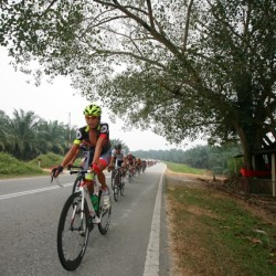 OCBC Singapore Pro Cycling Team rider Ho Jun Rong (front) competes in Stage 1 of Jelajah Malaysia on Wednesday in Rembau, Malaysia.